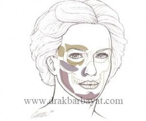 کلینیک زیبایی دکتر اکبر بیات